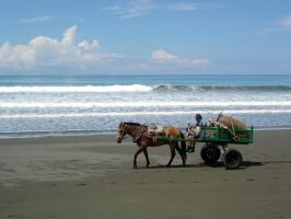 Costa Rica - Beach Cart by Amska