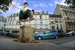 Zeb - Tree Wallie by SnoopDong