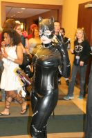 Archon_    Catwoman by alux58