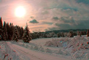 winter sun by thanka8