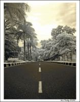 The Long And Winding Road by ditya