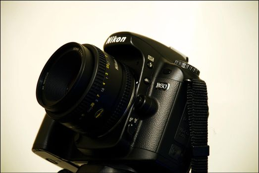 Nikon D80 with 50mm f1.8 by bubzphoto