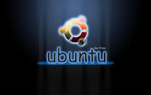 Ubuntu Wallpaper by thales-img