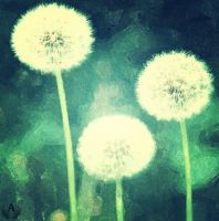 Taraxacum ( BO CONG ANH) by angeltime998