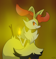 Braixen by ecmc1093