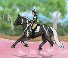 Dare Devils and Pink Water by SilverBrooke-Stables