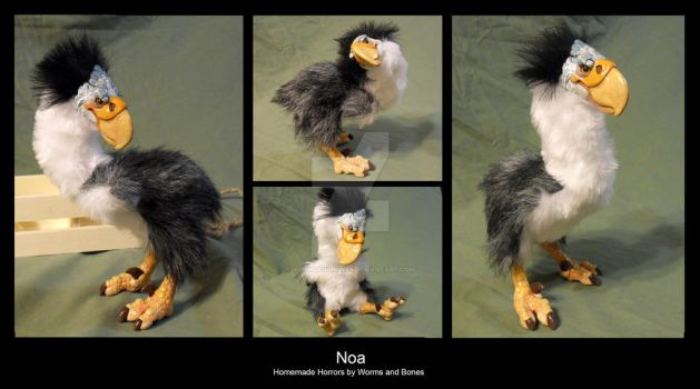 Noa by WormsandBones