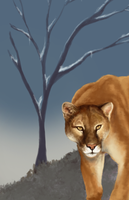 Andes' King WIP by Riiah