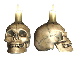 Skull 04 PNG Stock by Roys-Art