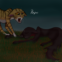 *SPO*Hollyleaf and Leafpool's last moment together by catz537