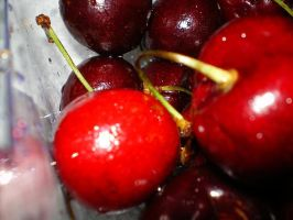 cherries 2 by yadypoo