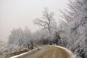 path to..winter by Lk-Photography
