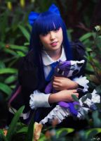 Stocking Cosplay 1 by SNTP