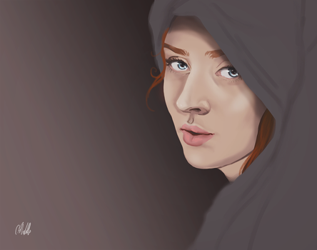 Sansa of House Stark by chaffyy