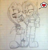 PC Sketch:. A flirty kitty and a mad echidna by Sam-the-wolf147