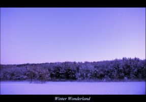Winter Wonderland by JoInnovate
