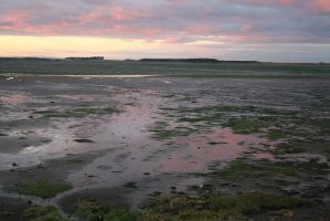 Stock - Mud Flats 1 by GothicBohemianStock
