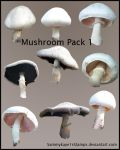 Mushrooom Pack 1 by Sammykaye1sStamps