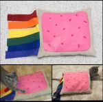 Nyan Cat Poptart --Pillow for cats by liongoalkeeper