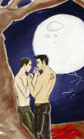 Teen wolf - Derek and Stiles by Deerane