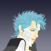 The Real Grimmjow Jaggerjack by ShinigamiDuoLover