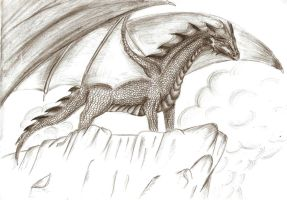 dragon by Diarsie