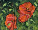 Poppies by mbeckett