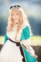 Alice in Wonderland ~ Sakizo by Neigeamer