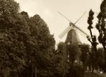 The Old Mill by Nastuescha