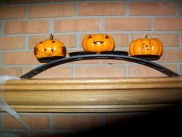 3 little pumpkins on a fence by penny-duchess-stock