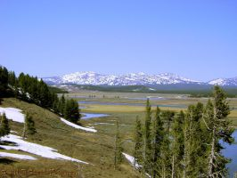 Yellowstone River Yellowstone National Park-2 by MSchmidtPhotography