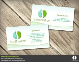 Sadhaka Business Card by NoamM