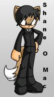 Shane McMahon Sonic Style by sonamy-666