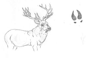HP Marauders - Prongs by caitiedidd