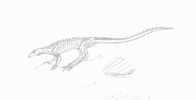 Scutellosaurus sketch by EmperorDinobot