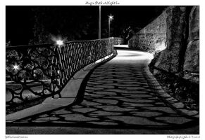 Magic Path at Night bw by yellowcaseartist