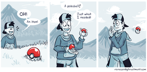 Irony in a pokeshell by Bummerdude