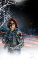 WinterSoldier by willmottram