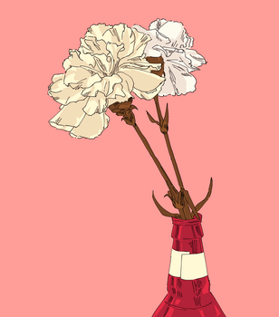 carnations by MustacheElm
