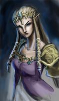 Princess Zelda by MGabric