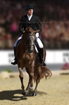 2nd Generation Dressage by HallowsNorth