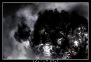 Storm Chaser by oggie85