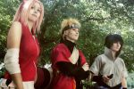 Once Team 7, Always Team 7 by Iceveyns