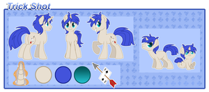 Trick Shot Reference Sheet by XNightMelody