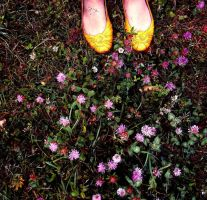 old yellow shoes by missMimee