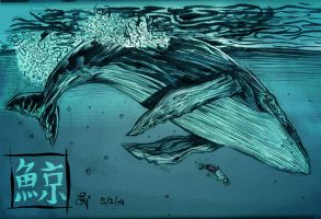 Blue Whale by MIRRORMASTER