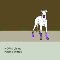 HCW's Violet Racing Winds by Experimentor-Iblis