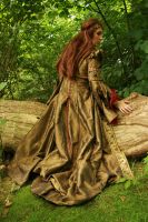 Lady Guinevere 09 by MarjoleinART-Stock