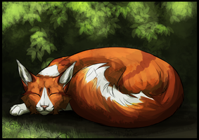 WVS Sleeping Red by Soulphur