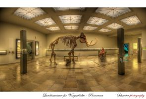 Museum of Prehistory No.1 by matze-end